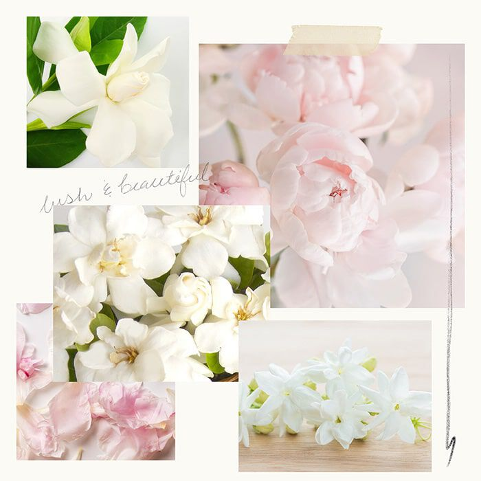 Goldleaf Gardenia Fragrance Experience