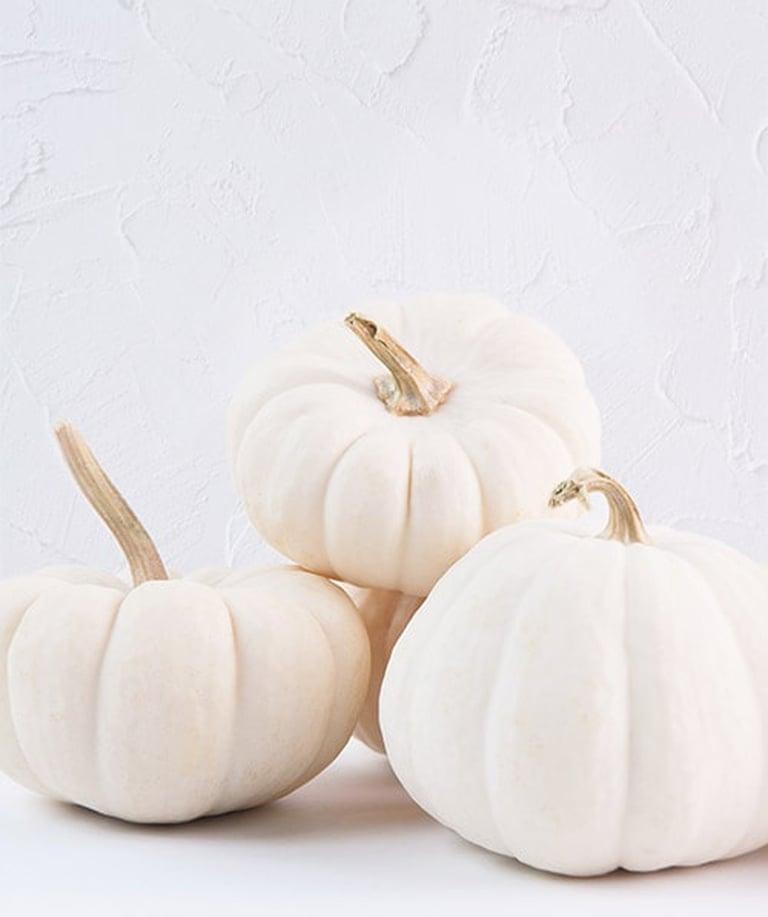 Heirlum Pumpkin