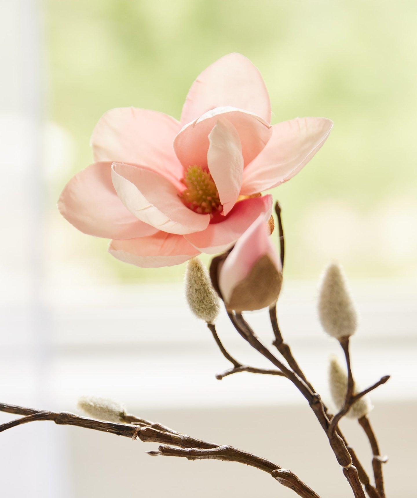 Kimono Rose