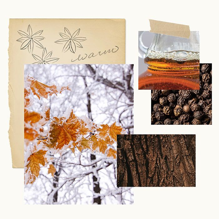 Forest Maple Fragrance Experience