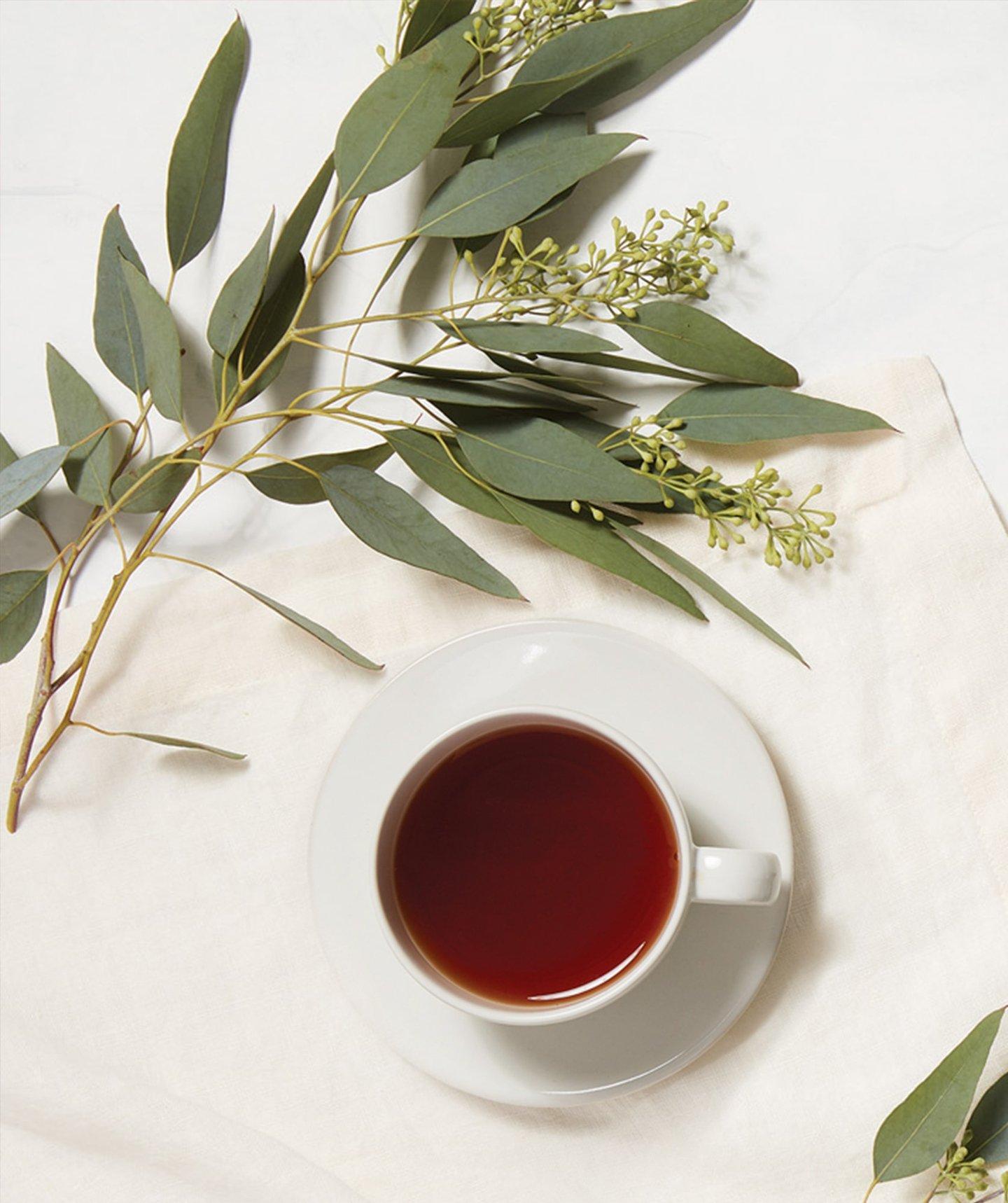 Eucalyptus White Tea