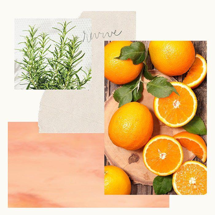 Sweet Tangerine Fragrance Experience
