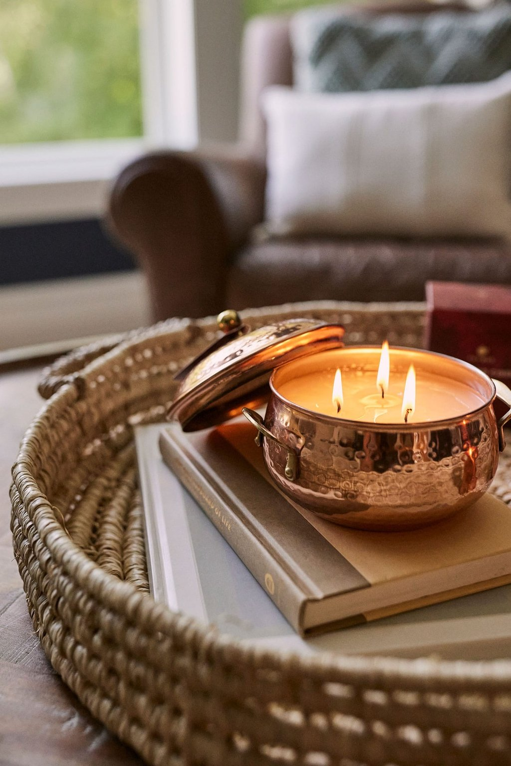 Simmered Cider 3-wick Candle
