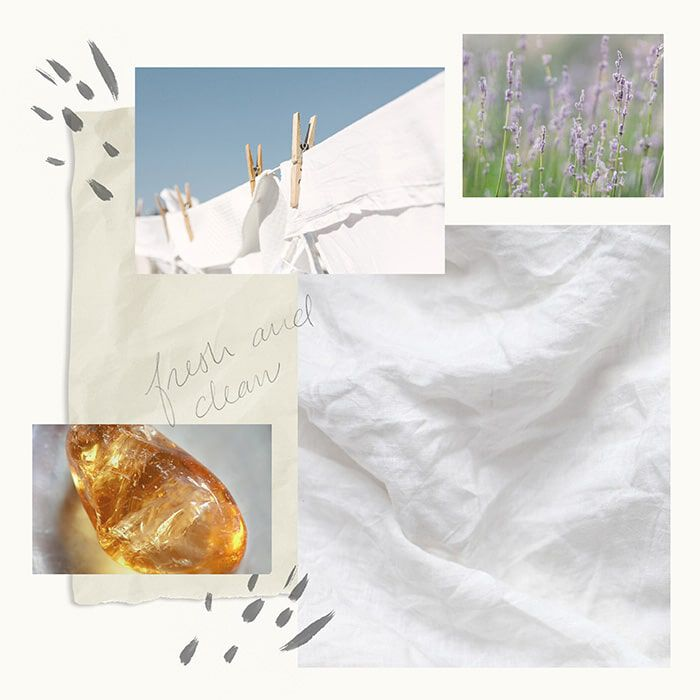 Washed Linen Fragrance Experience